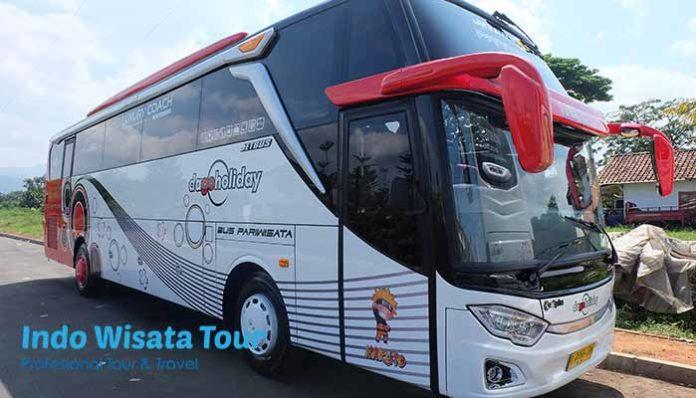 Daftar Harga Sewa Bus Pariwisata di Banyuwangi Murah