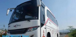 Daftar Harga Sewa Bus Pariwisata di Probolinggo Murah